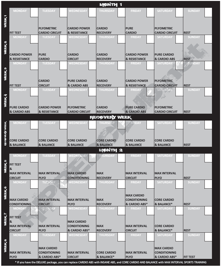 photograph about Insanity Workout Schedule Printable identify Madness Exercise Program - Totally free PDF Down load + Reward