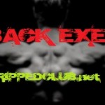 P90X Back Exercises
