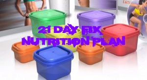 21 day fix nutrition guide